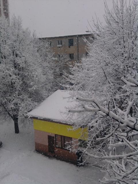 Iarna în Paşcani
