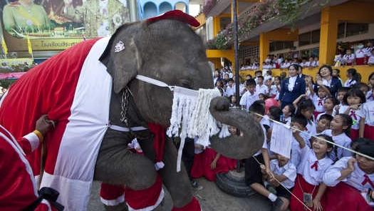 Moş Elefant
