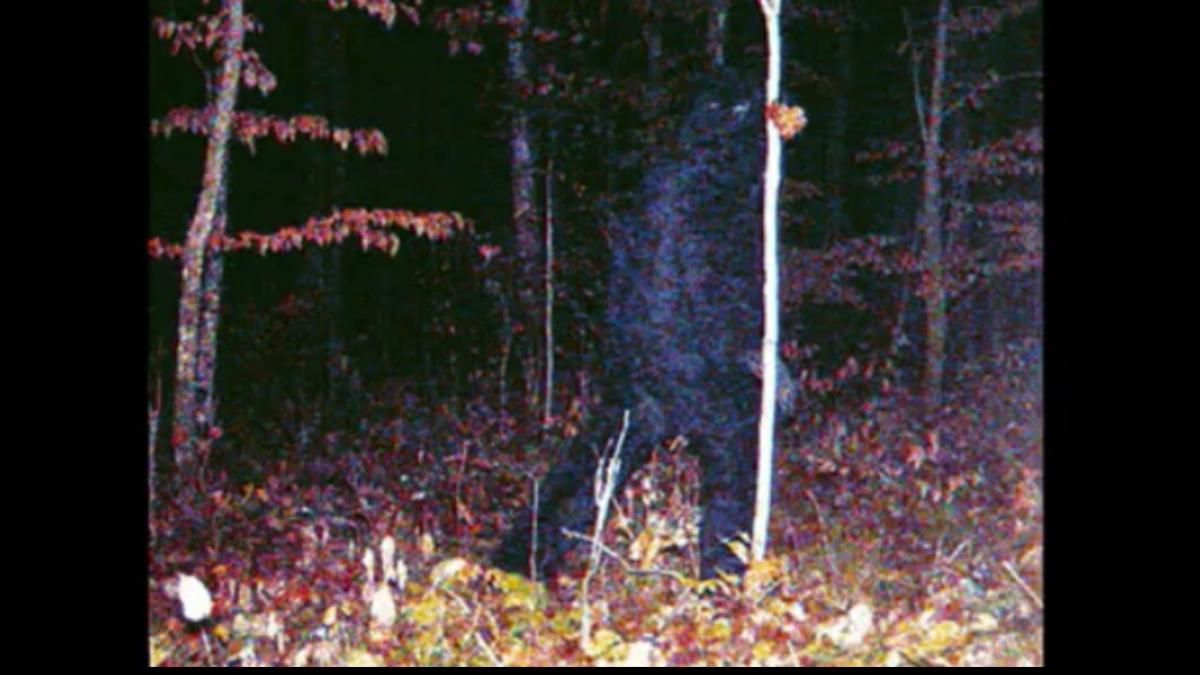 O fotografie realizată în Minnesota, Statele Unite