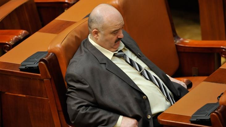 Cătălin Voicu, senator PSD