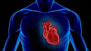 O chinezoiacă a supravieţuit dupa 30 de minute de stop cardiorespirator/Foto: scientificamerican.com