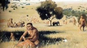 Perioada neoliticului