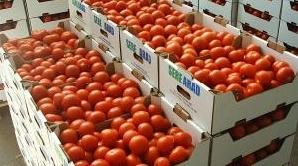 Turcii au fost descoperiţi într-un TIR cu tomate/Foto: s2.zoot.ro