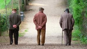În timpul procesului de îmbătrânire, putem menţine tinere funcţiile creierului
