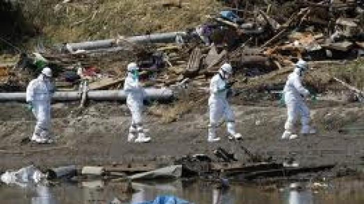Pulbere chimică ce poate neutraliza substanţele radioactive