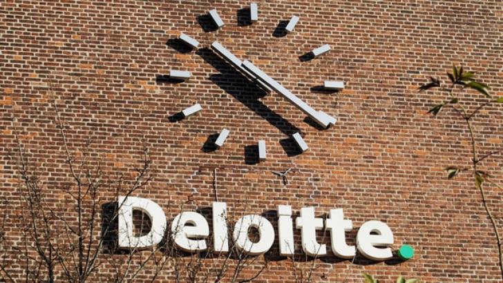 Creditele neperformante pot deveni o problemă pentru bănci (Deloitte)