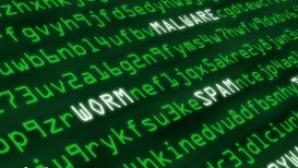 Securitatea cibernetică ar putea fi introdusă în programa şcolară. Ce vor învăţa copiii