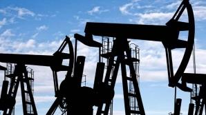 Cine va face bani cu aurul, gazele, petrolul şi apa României