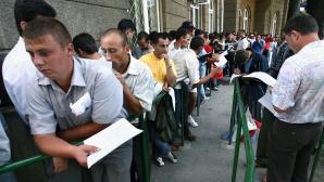 Căpşunarii din Spania au un site cu informaţii despre drepturile lor