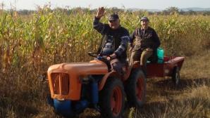 Fermierii pot fi despăgubiţi pentru secetă