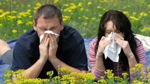 """Schimbările climatice aduc un """"tsunami de polen"""" pentru cei de suferă de alergii"""