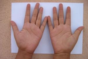 Cum sa citesti in palma: primii pasi ca sa-ti ghicesti viitorul