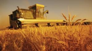 Creşterea economică ar putea depăşi estimările în cazul unui an agricol peste aşteptări