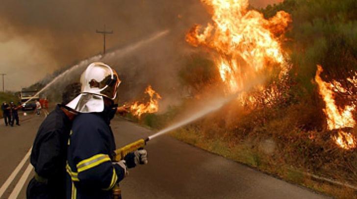 Incendiu violent de la Satu Mare, nestins de 48 de ore.Mai mulți experți din Canada, la fața locului