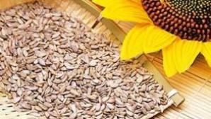 De ce este bine să mănânci seminţe de floarea soarelui