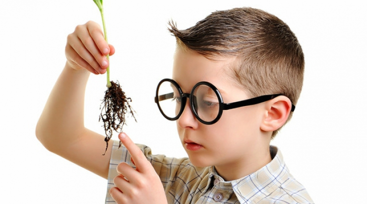 Întrebări de cultură generală dintr-un concurs pentru copii geniu. La câte poţi să răspunzi?