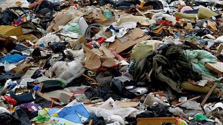 Descoperire neaşteptată la groapa de gunoi