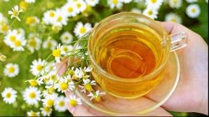 Tratamente naturiste. Plantele care te scapă de roşu în gât