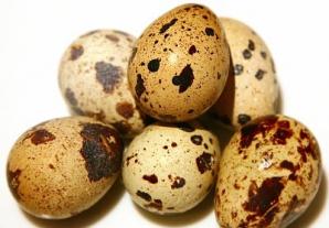 Descoperire surprinzătoare într-un ou de prepeliţă