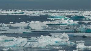 Polul Nord
