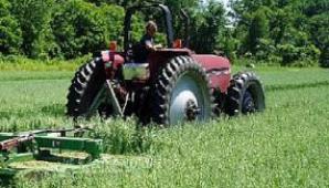 Facilităţi pentru investitorii în agricultură