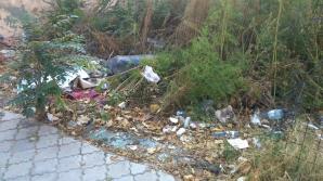 Groapă de gunoi în centrul Bucureştiului