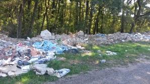Acțiune de ecologizare a pădurii Băneasa
