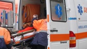 Două persoane au murit după ce un copac rupt de vânt a căzut peste ele