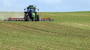 Străinii, undă verde să cumpere nestingheriți teren agricol
