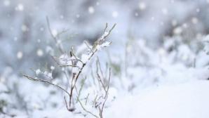 Temperaturile reci pot declanşa accidente vasculare cerebrale
