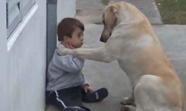 Cea mai iubitoare căţeluşă din lume. Gestul care-l face pe un copil cu sindrom Down s-o îmbrăţişeze