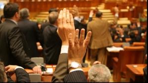 Legea îi obligă pe români să angajeze bone cu contract de muncă