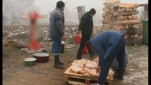 Ignatul, ziua în care, potrivit tradiţiei, se taie porcul de Crăciun