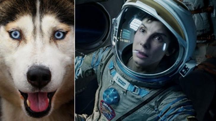 """Filmul """"Gravity"""" a primit 11 nominalizări la premiile BAFTA 2014"""