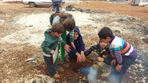 63 de persoane au murit de foame într-o tabără de refugiați palestinieni