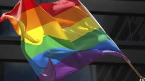 DISCRIMINARE SEXUALĂ: România apare într-un raport CE, în urma scandalului ACCEPT-Becali