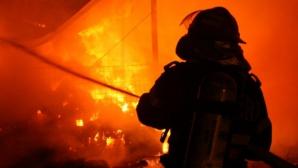 Incendiu într-o pădure din Bacău, unde au ars şase hectare de litieră şi resturi de buşteni