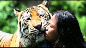 Prietenia dintre un tânăr şi tigrul pe care îl creşte de când avea 3 luni, Mulan