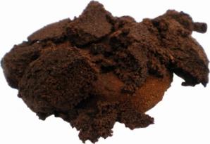 BEI CAFEA ACASĂ? Zece motive ca să nu mai arunci zațul de cafea