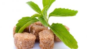 Alternative sănătoase și cu puține caloriiale zahărului