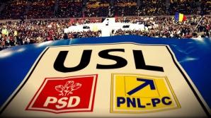 PSD vrea ca șeful campaniei USL pentru referendumul pe Constituție să fie de la PNL
