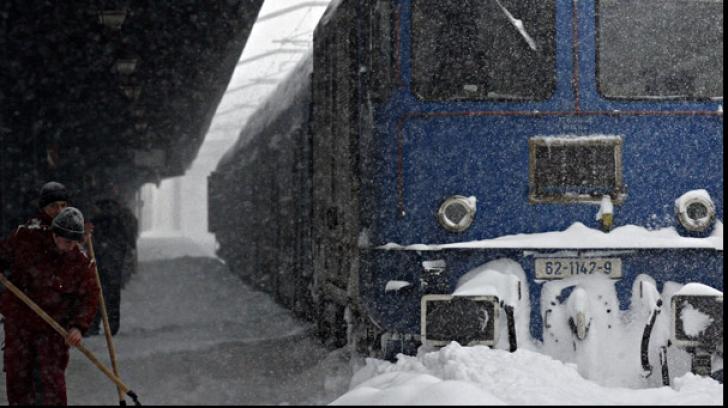 Traficul feroviar, blocat în județul Harghita! Un brad a căzut pe firele de tensiune
