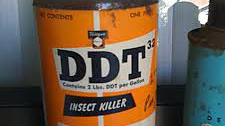 Insecticidul DDT ar putea fi un factor de risc pentru boala Alzheimer