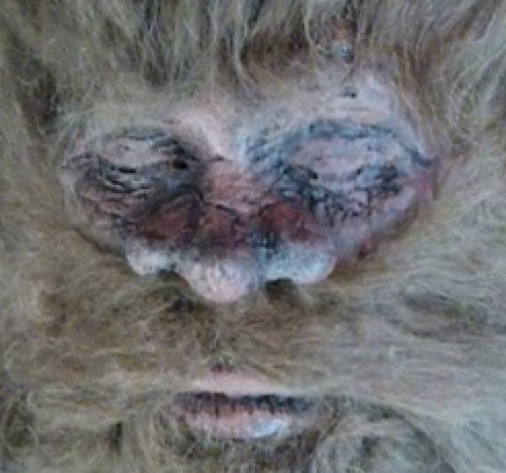 Bigfoot sau farsă?