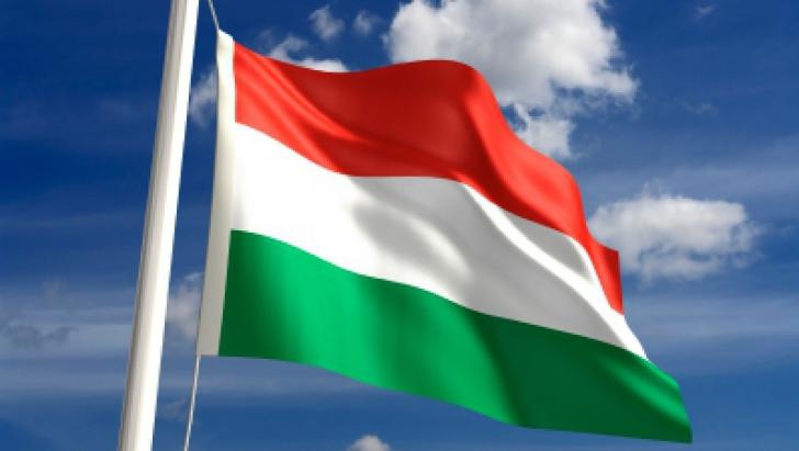 Solicitarea Ungariei