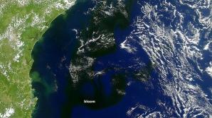 Explozie de microorganisme în Atlantic