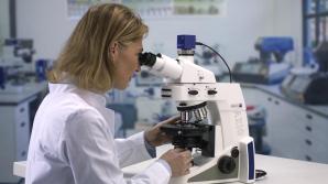 Cercetările de la Cluj se vor încheia în anul 2015