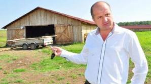 Dumitru Andreşoi, cel mai mare proprietar de oi din România