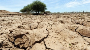 Manifestările puternice ale fenomenului El Nino s-ar putea dubla ca frecvență
