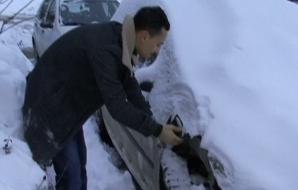 Un craiovean susţine că aripa maşinii i-a fost mâncată de câini
